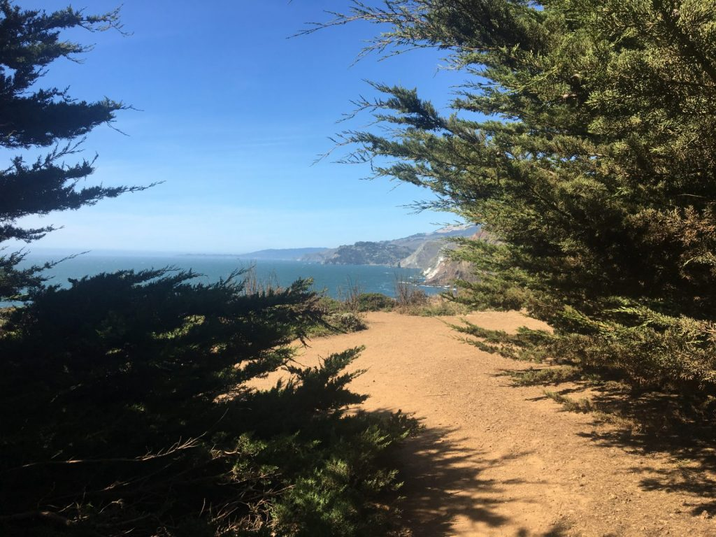 Best Walking Trails in the San Francisco Bay Area